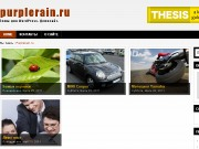 Тема WordPress Ariela