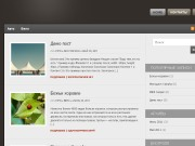 Тема WordPress Copyright