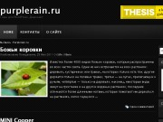 Тема WordPress Darkzone