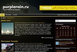 тема wordpress goldace