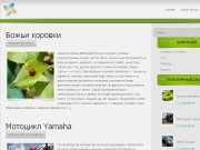 Тема WordPress Lime