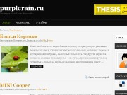 Тема WordPress Medena
