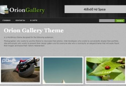 тема wordpress oriongallery