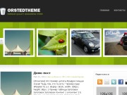 Тема WordPress Orsted