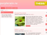 Тема WordPress Pinkvisor