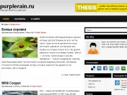 Тема WordPress Pronox