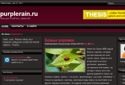 тема wordpress redvox