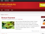 Тема WordPress Revine