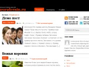 Тема WordPress Stormie