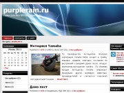 Тема WordPress Websim