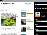 Тема WordPress Zenews